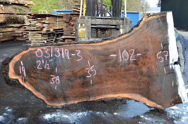 031319-03 Oregon Black Walnut Slab