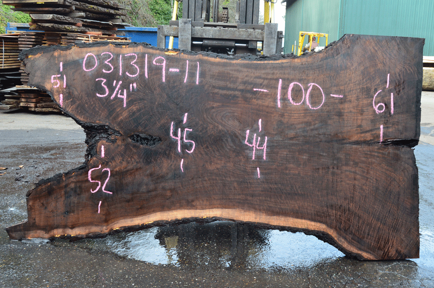 031319-11 Oregon Black Walnut Slab