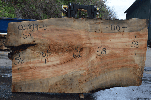 031819-05 Big Leaf Maple Slab