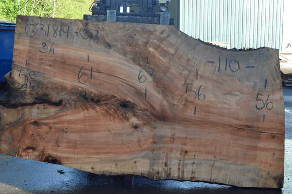 031819-07 Big Leaf Maple Slab