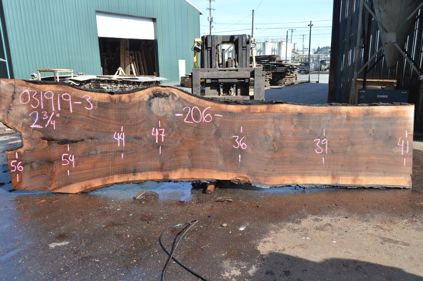 031919-03 Oregon Black Walnut Slab