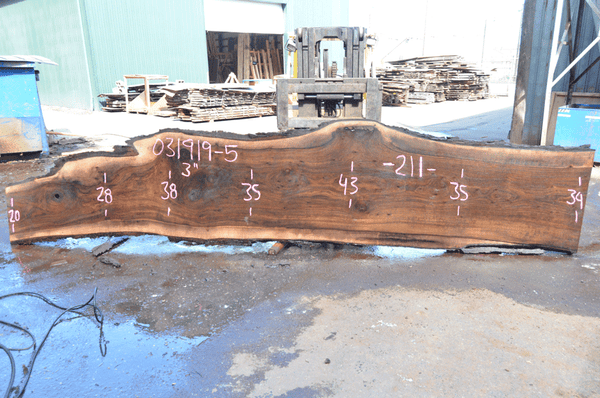 031919-05 Oregon Black Walnut Slab