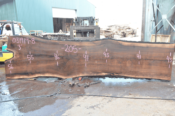 031919-08 Oregon Black Walnut Slab