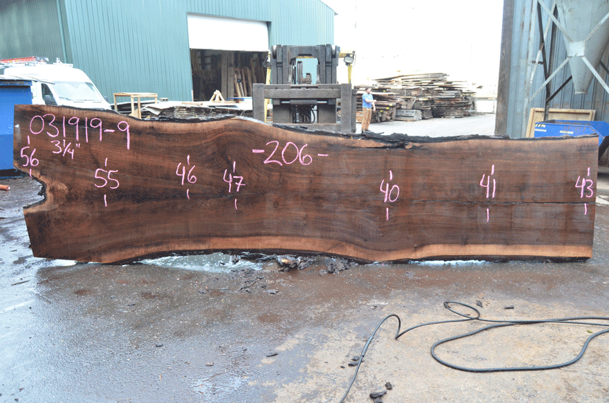 031919-09 Oregon Black Walnut Slab