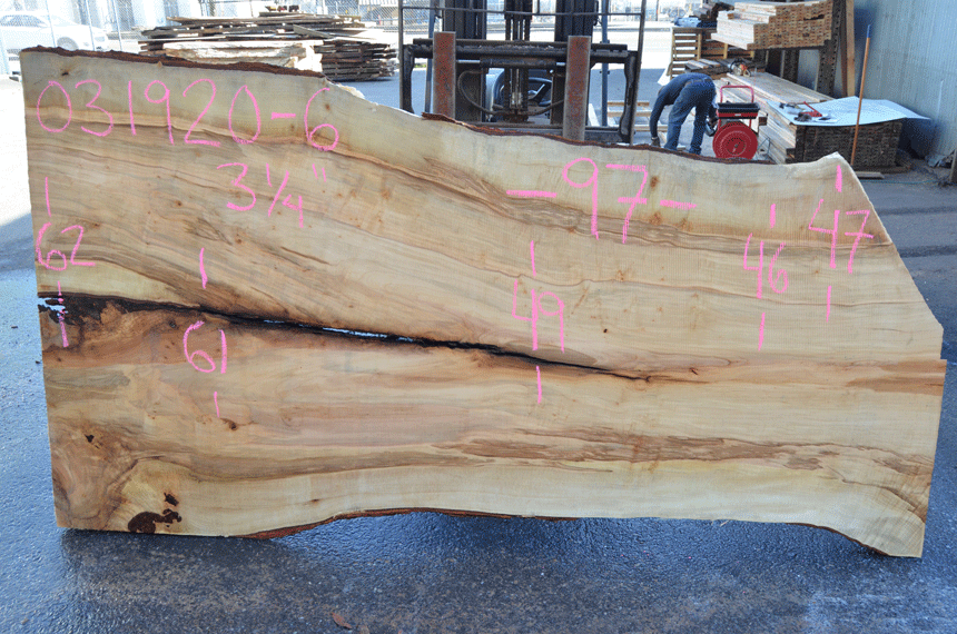 Big Leaf Maple Slab 031920-06