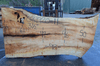 Big Leaf Maple Slab 031920-11