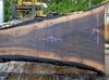 Oregon Black Walnut Slab 032213-15