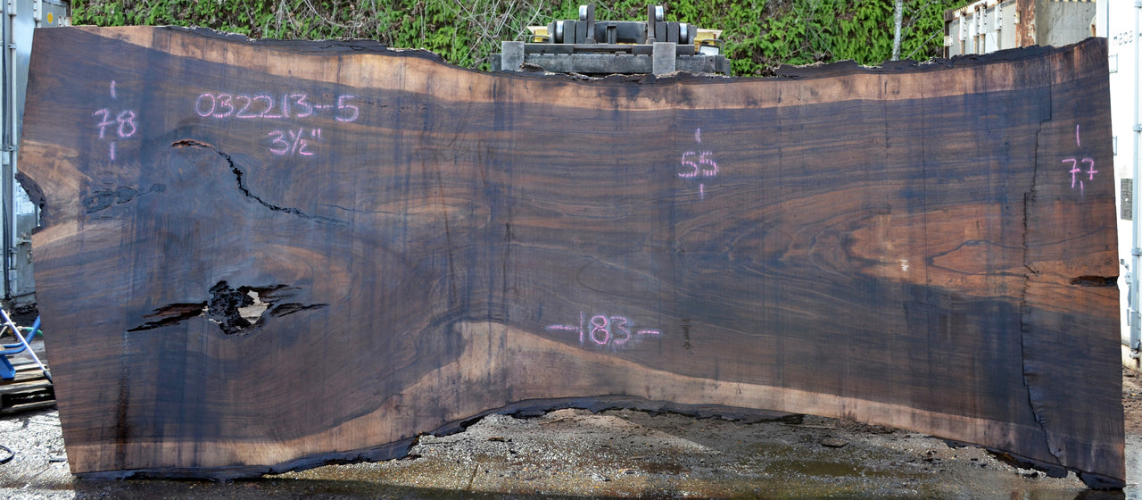 Oregon Black Walnut Slab 032213-05
