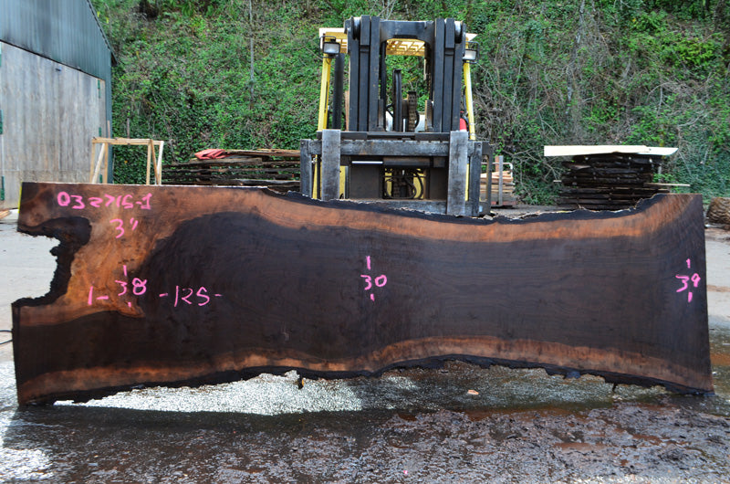 Oregon Black Walnut Slab 032715-01