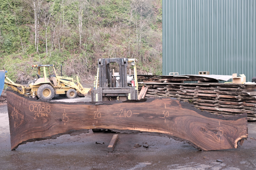 Oregon Black Walnut Slab 032818-01