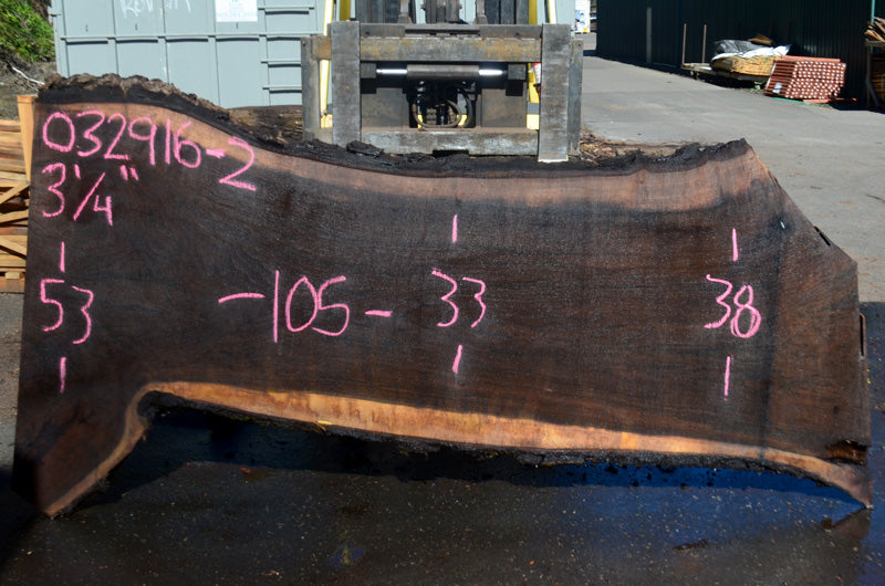 Oregon Black Walnut Slab 032916-02