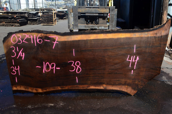 Oregon Black Walnut Slab 032916-07