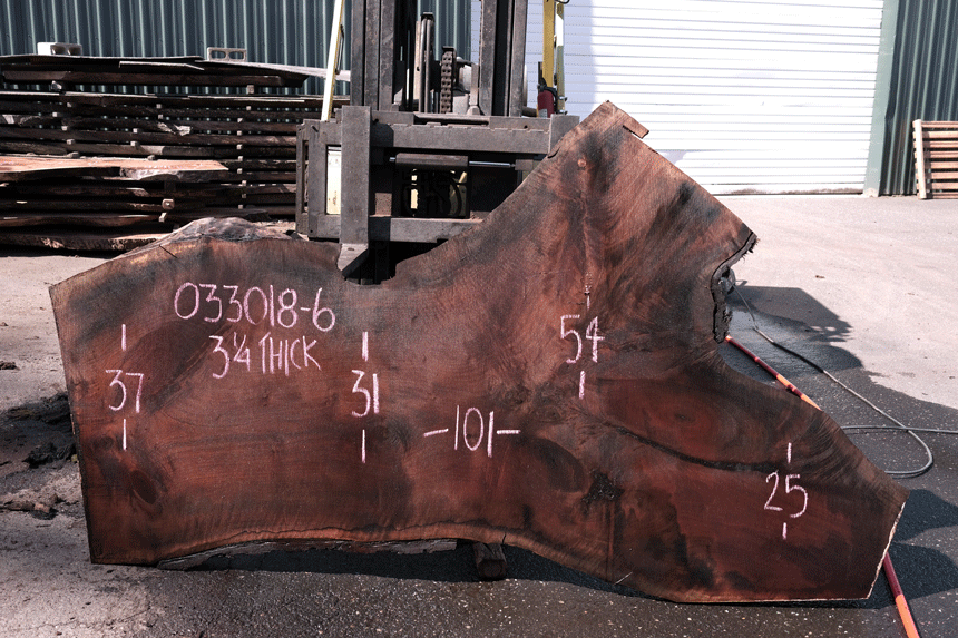 Oregon Black Walnut Slab 033018-06