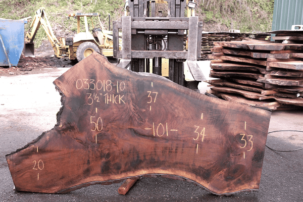Oregon Black Walnut Slab 033018-10
