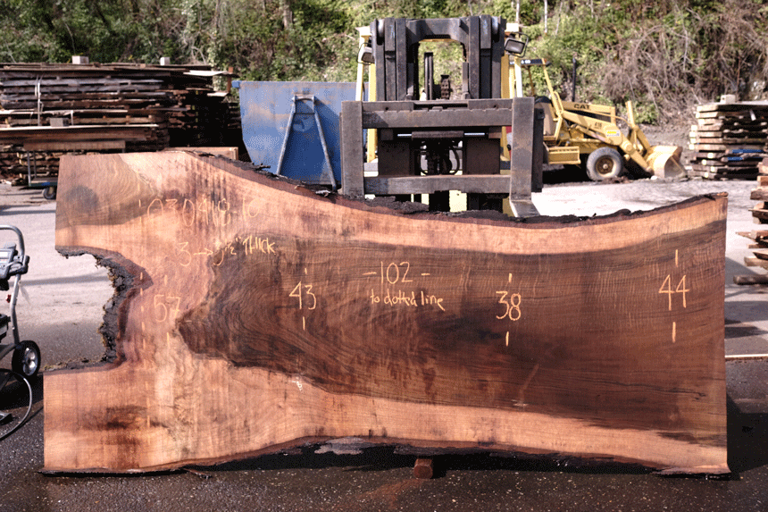 Oregon Black Walnut Slab 040318-10