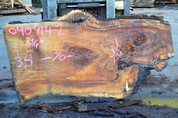 Oregon White Oak Slab 040614-01