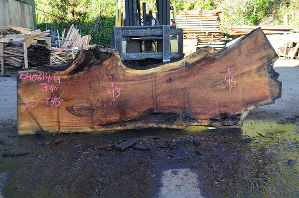 Oregon White Oak Slab 040614-04