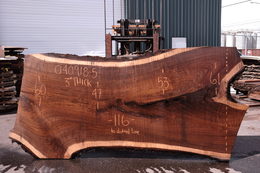 Oregon Black Walnut Slab 040918-05