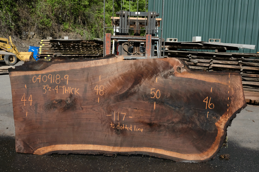 Oregon Black Walnut Slab 040918-09