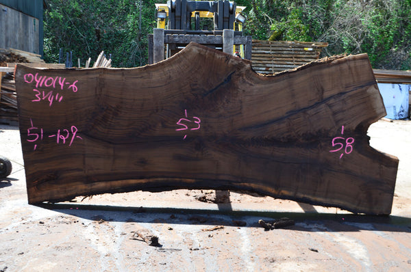 Oregon Black Walnut Slab 041014-06