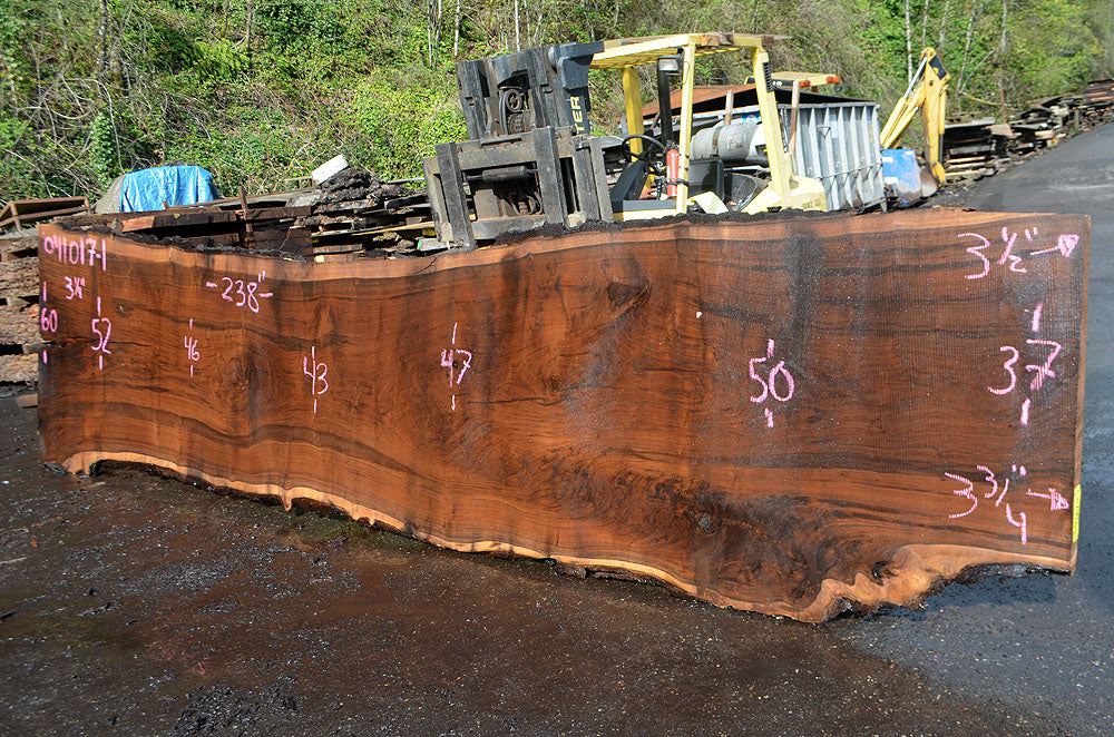 Oregon Black Walnut Slab 041017-01