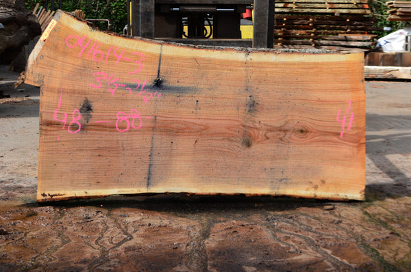 Oregon Red Oak Slab 041614-03