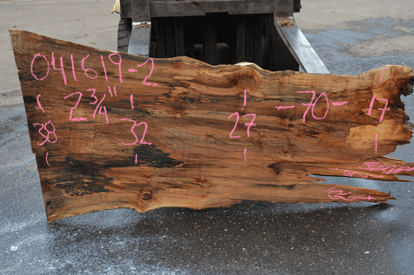 041619-02 Big Leaf Maple Slab