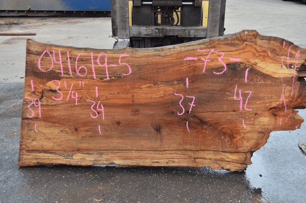 041619-05 Big Leaf Maple Slab