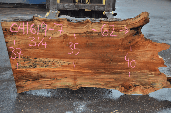 041619-07 Big Leaf Maple Slab