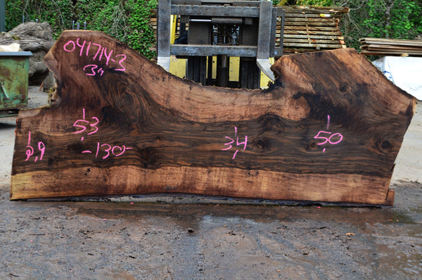 Bastogne Walnut Slab 041714-03
