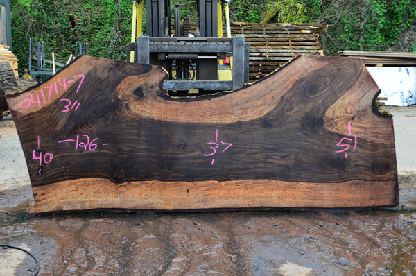 Bastogne Walnut Slab 041714-07