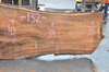 041719-02 Big Leaf Maple Slab