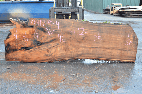 041719-04 Big Leaf Maple Slab