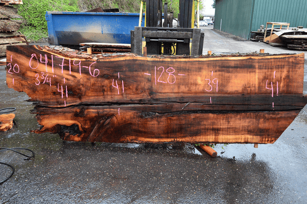 041719-06 Big Leaf Maple Slab