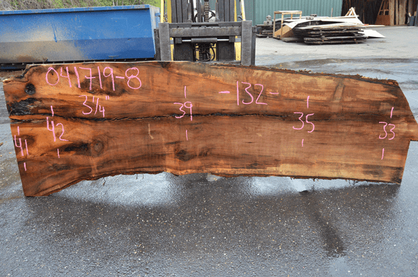 041719-08 Big Leaf Maple Slab