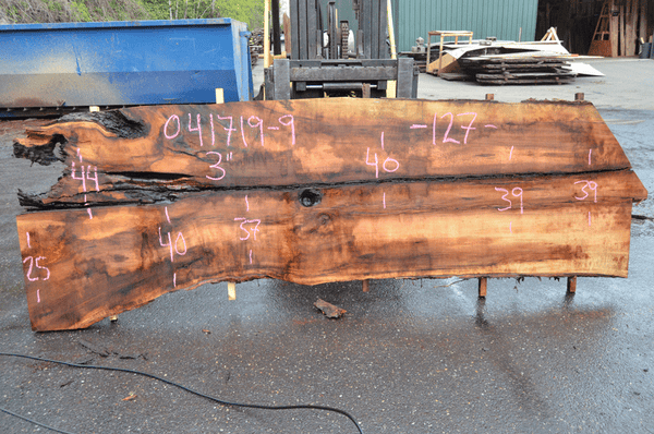 041719-09 Big Leaf Maple Slab