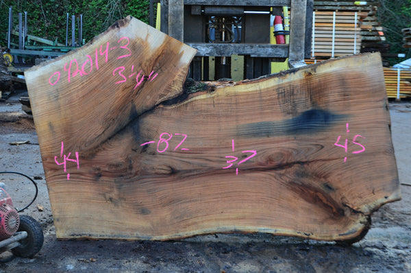 Oregon White Oak Slab 042014-03