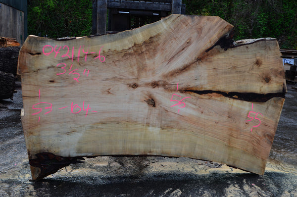 Big Leaf Maple Slab 042114-06