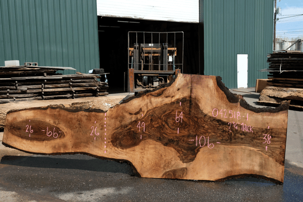 Bastogne Walnut Slab 042518-01