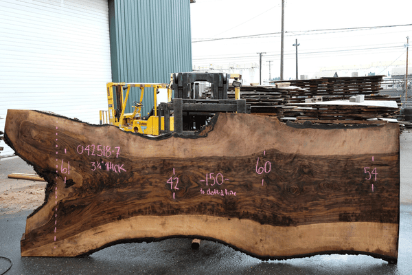 Bastogne Walnut Slab 042518-07