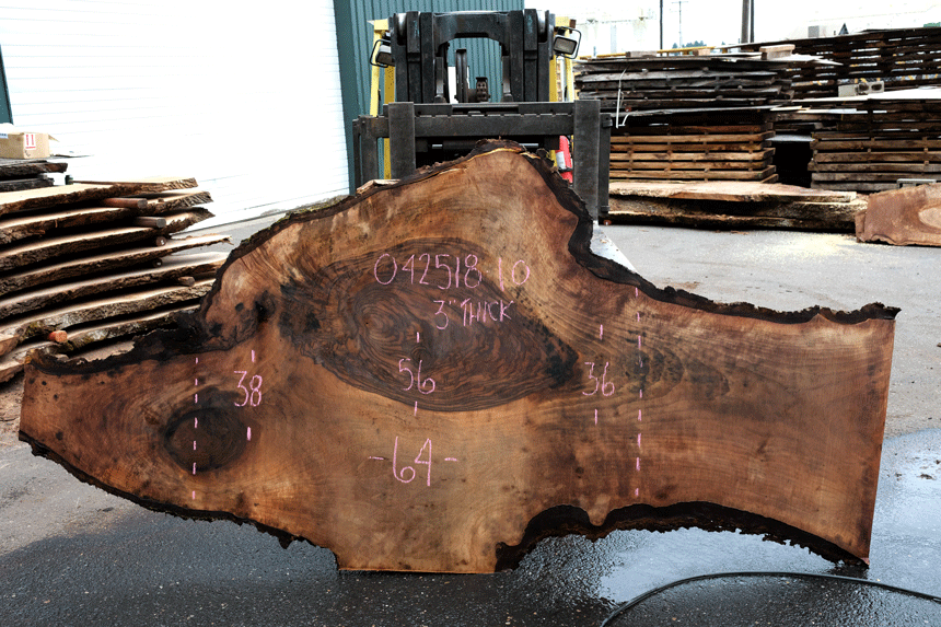 Bastogne Walnut Slab 042518-10