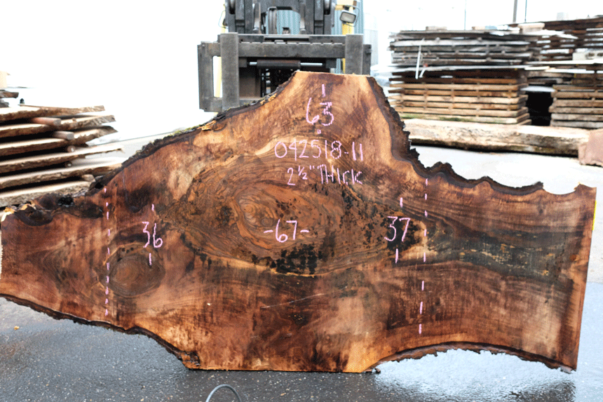 Bastogne Walnut Slab 042518-11