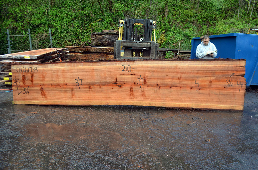 Oregon Redwood Slab 042617-08