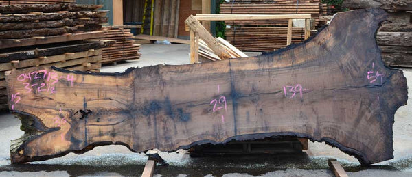 English Walnut Slab 042713-04