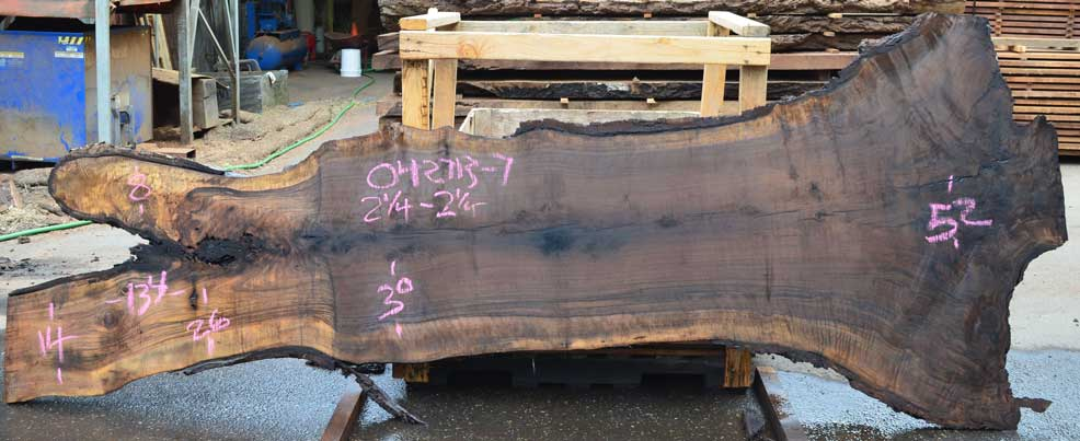 English Walnut Slab 042713-07