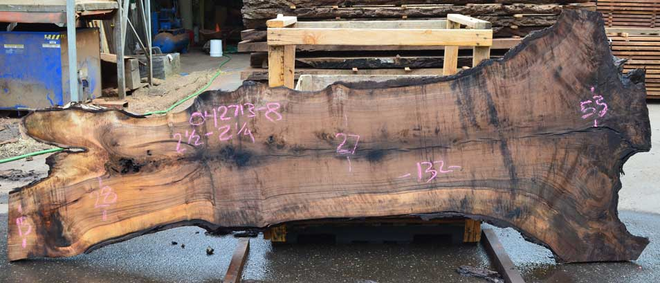 English Walnut Slab 042713-08
