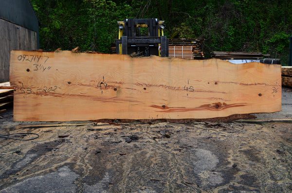 Oregon Fir Slab 042714-07
