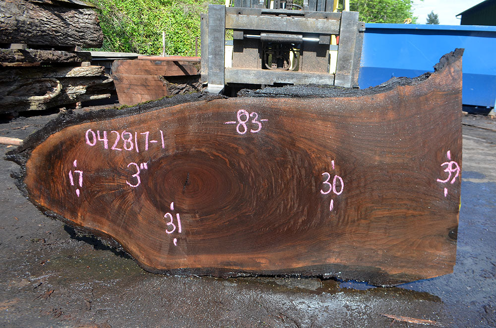 Oregon Black Walnut Slab 042817-01