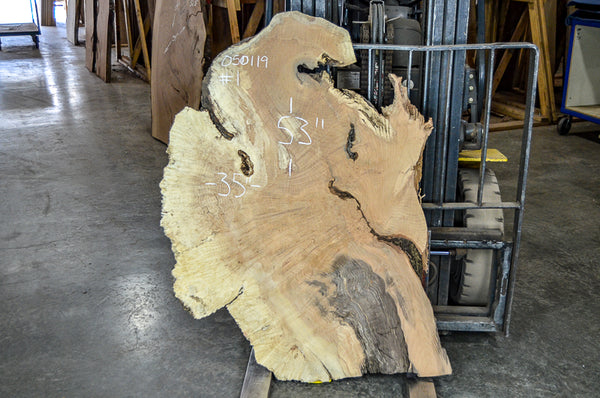 Maple Burl 050119-01