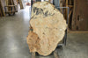 Maple Burl 050119-02